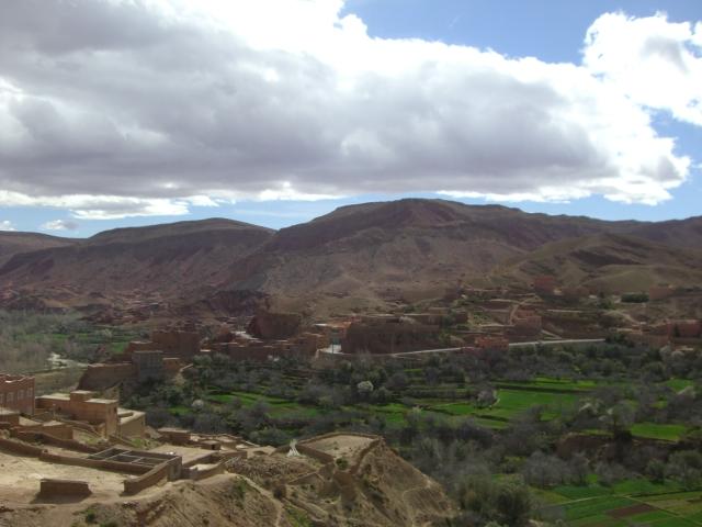 Sahara og Marokko Feb 2010 099