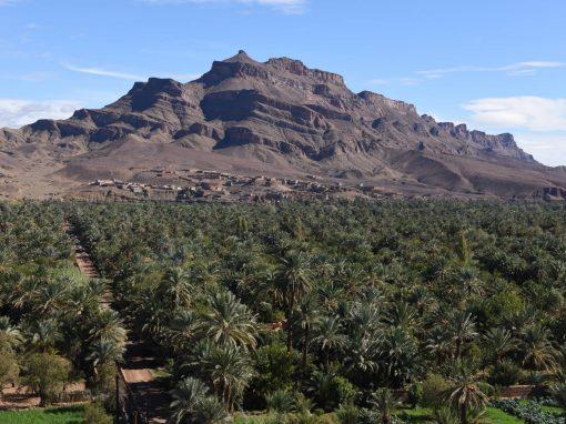 FRA MARRAKECH: 2 dagers tur nr. 202: Foum Zguid – Ørkencamp – Kasbah Ait Benhaddou