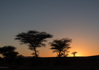 FROM MARRAKECH: 2 days trip: Kasbah Ait Benhaddou – Zagora – Desert camp