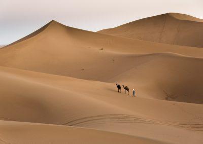 Wild Camps – Trekking in Sahara