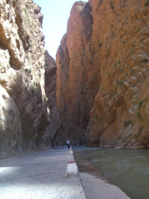 Marokko og Sahara April Mai 2010 147
