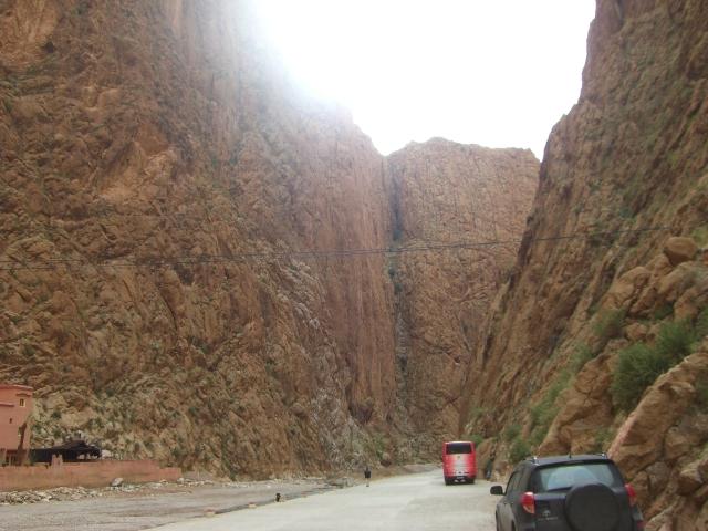 Sahara og Marokko Feb 2010 104