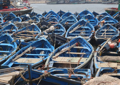 FROM MARRAKECH: Day Tour to Essaouira – the blue and white fishing town