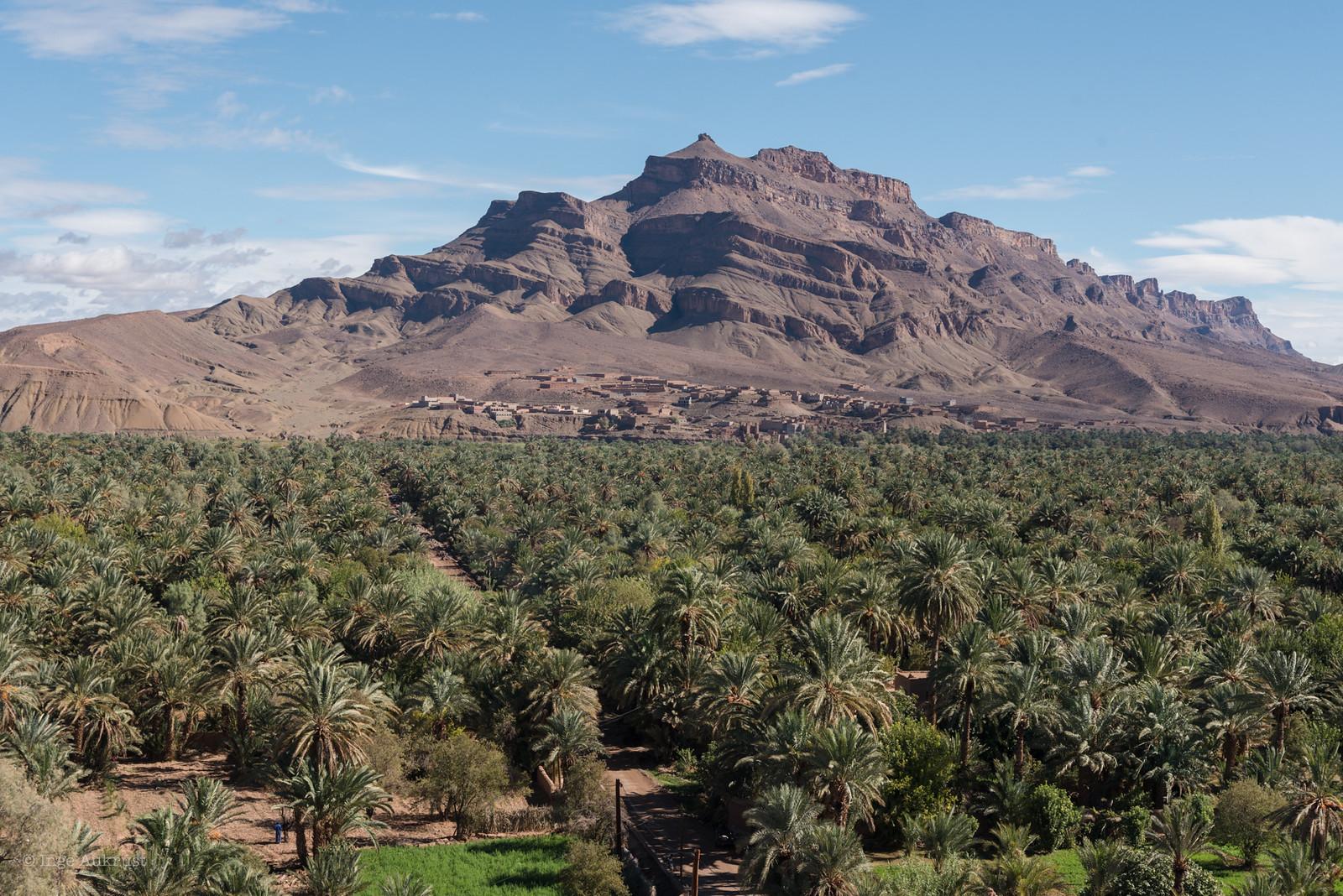 marokko4-kopi