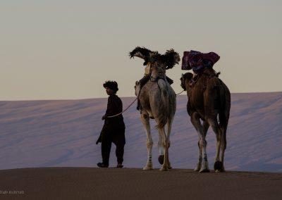 FRA MARRAKECH: 2 dagers tur:  Kasbah Ait Ben Haddou – Erg Lihoudi sanddyner – Ørkencamp