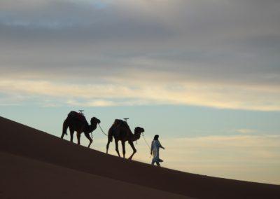 FROM MARRAKECH: 4 days trip: Atlas Mountains – Ait Ben Haddou – Erg Chegaga dunes – Desert camp – Taroudant – Essaouira