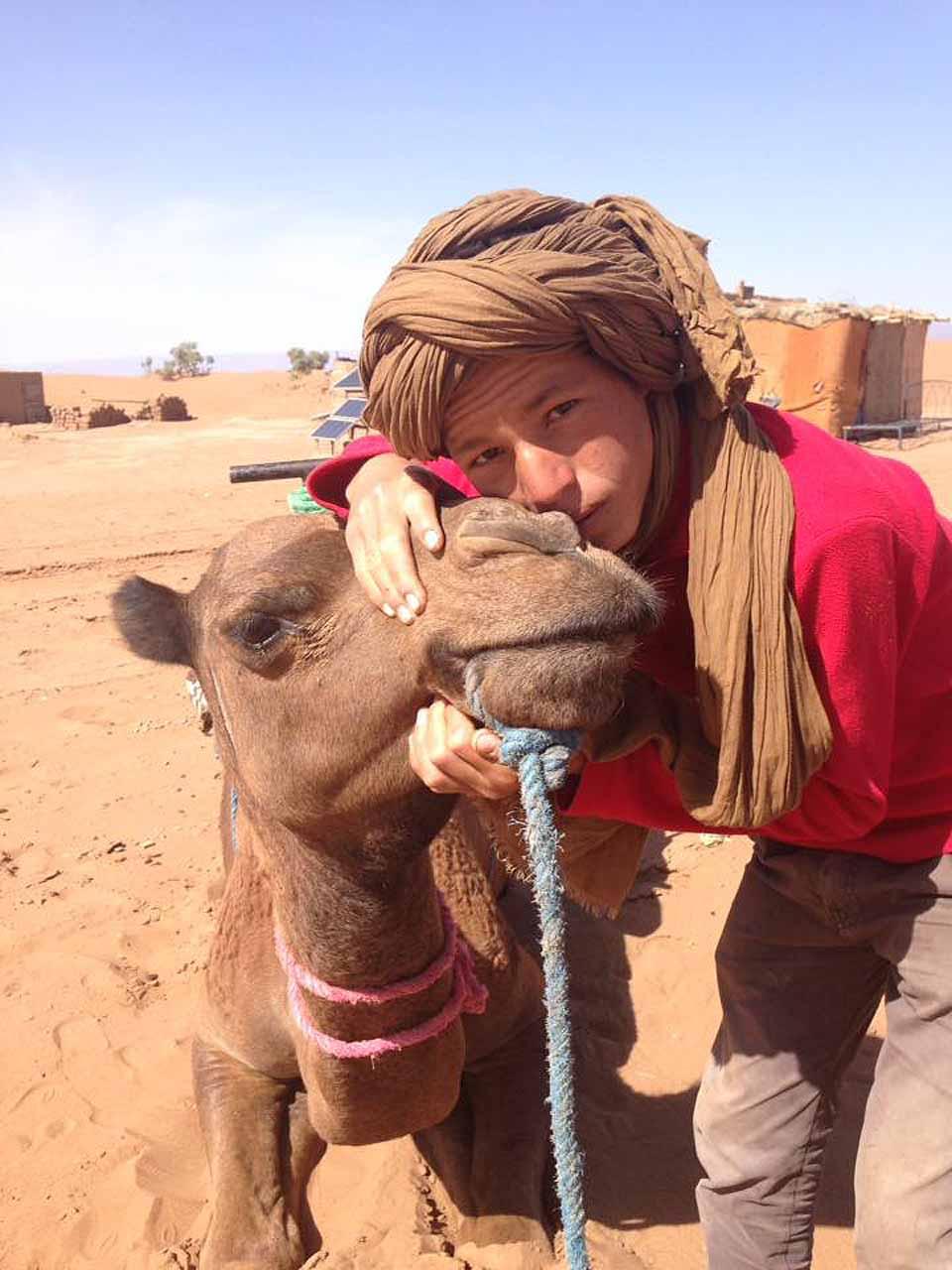 DC Camels2